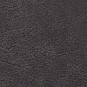 1109 Pewter - Carleather